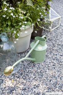 Haws vattenkanna 1 liter Indoor - Ljus grön