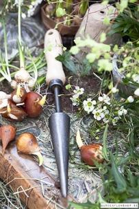 Dewit Planteringspinne